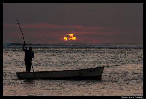 c24-Mauritius_009.jpg